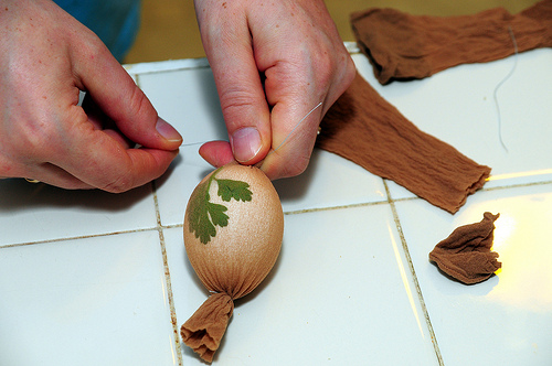 Egg Design