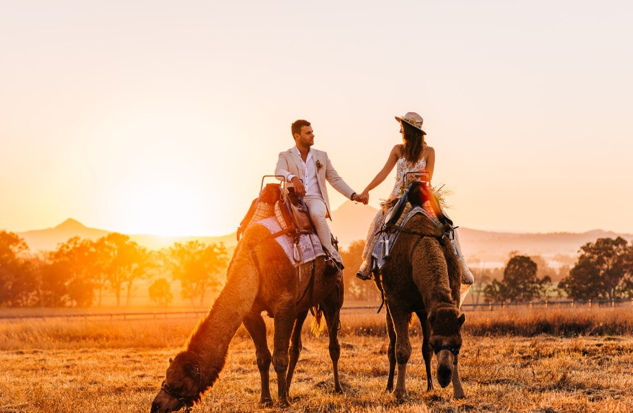 Why You Should Consider this Scenic Rim Wedding Venue