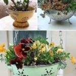 Charming outdoor hanging planters ideas to brighten your yard 30