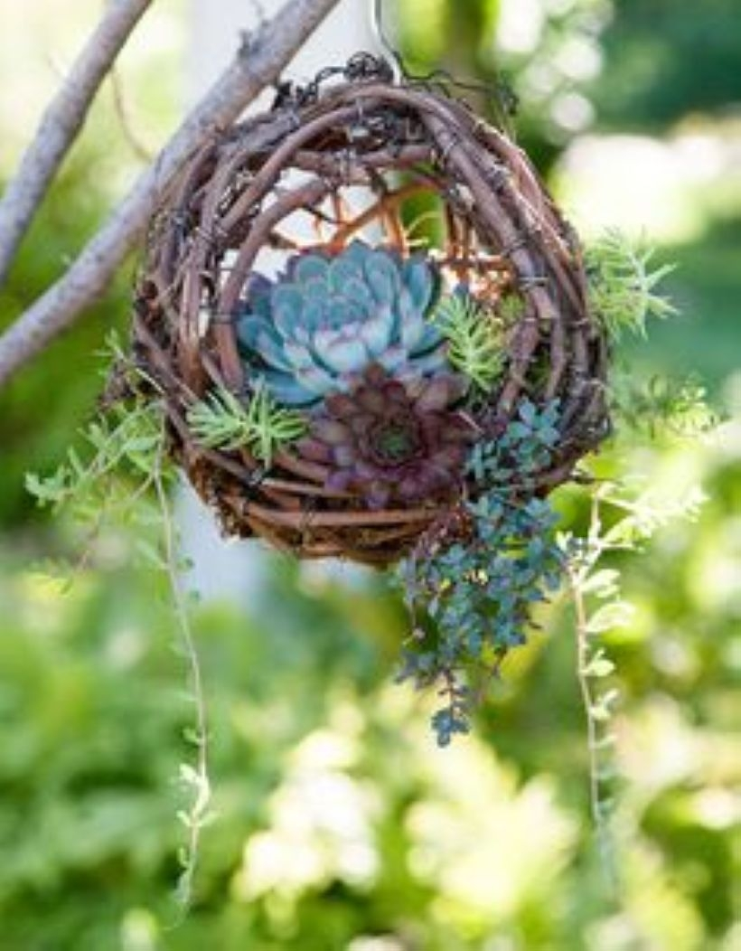 Creative garden potting ideas 17