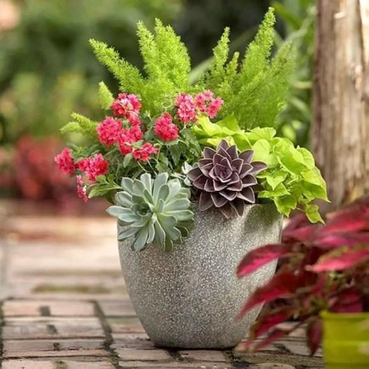 Creative garden potting ideas 19