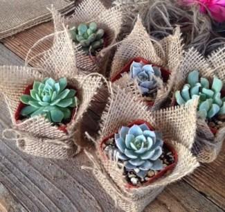 Creative garden potting ideas 27