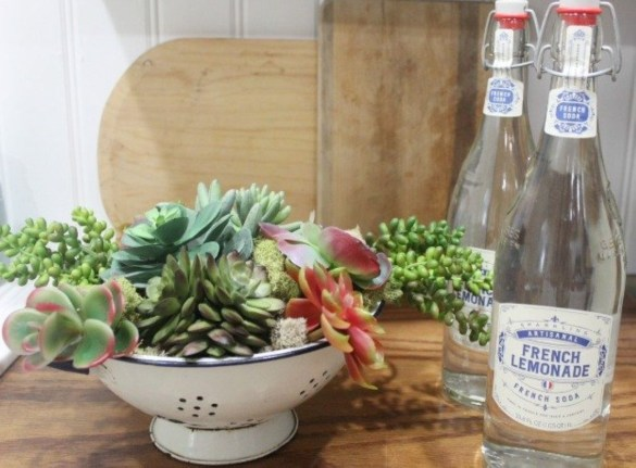 Faux cactus and succulent projects and ideas to decorate your home 21
