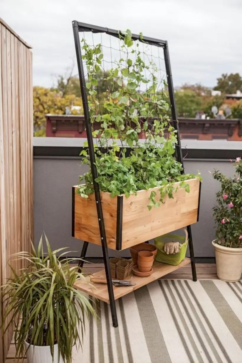 Apex trellis planter