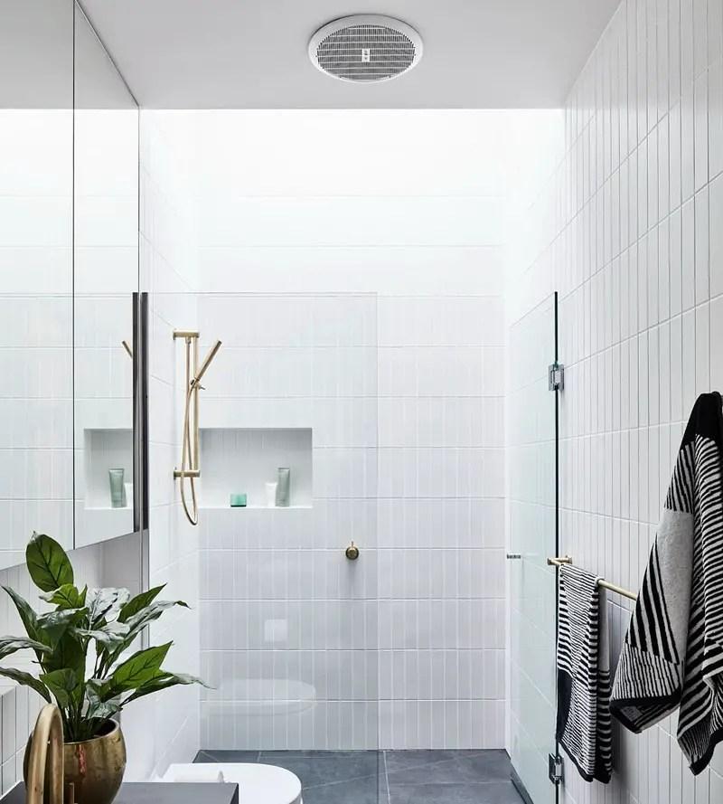 8. bathroom with skylight
