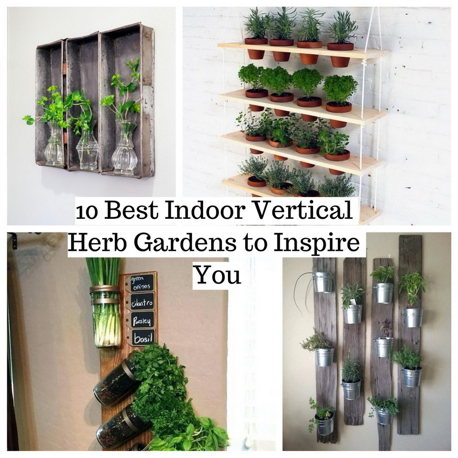 It Benefits To Provide Daily Fresh Herbs At Your Home. There Are Several  Ways You Can Do To Grow Herbs In Your Home, One Of Them Is Indoor Vertical  Garden.