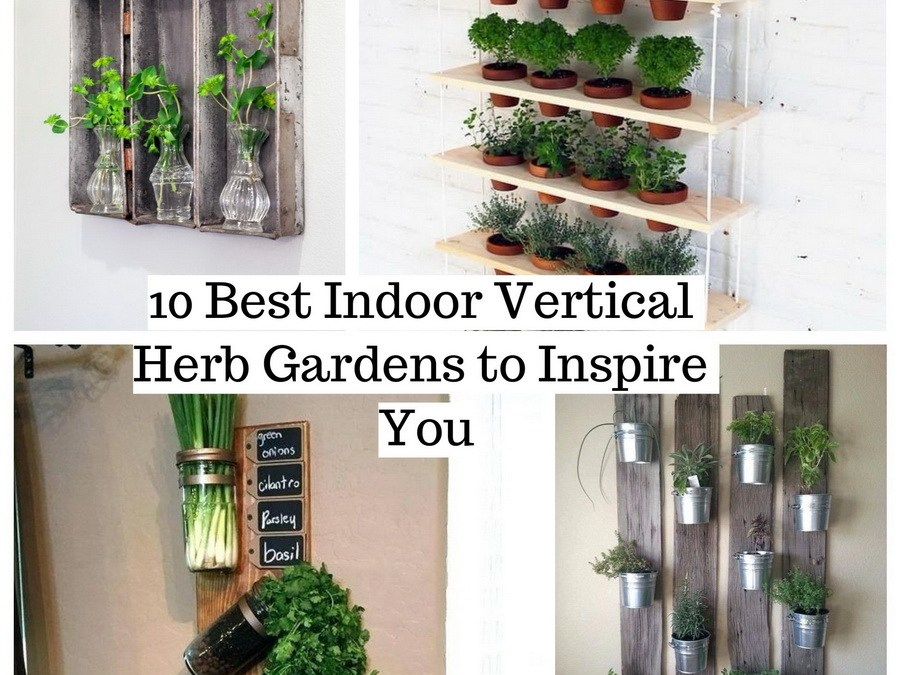 10 Best Indoor Vertical Herb Gardens to Inspire You