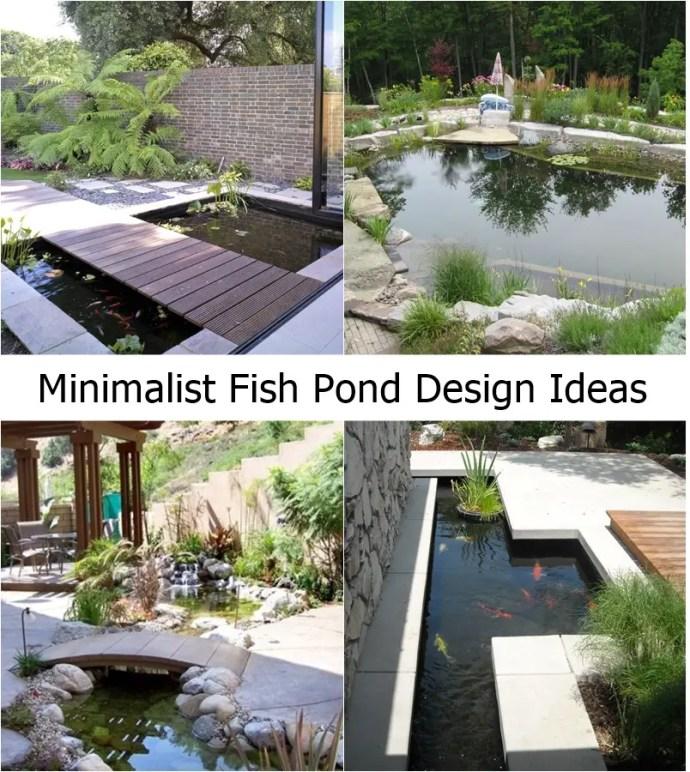Minimalist fish pond design ideas