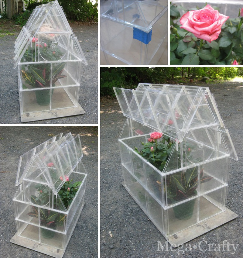 Cd-case-greenhouse