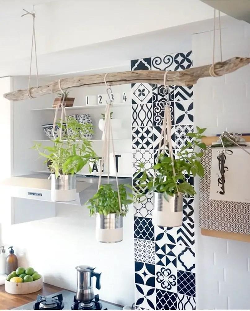 Kitchen herbs garden 2