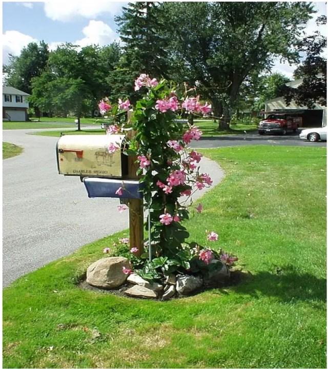 Mailbox ideas 5