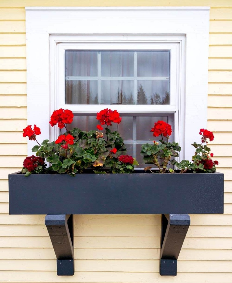 Wooden window box with black semigloss