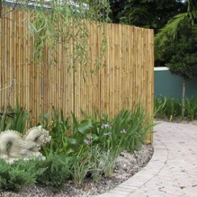 Bamboo fence ideas for small houses 51
