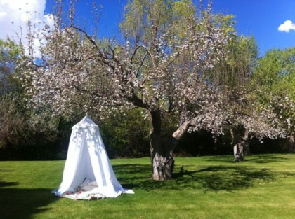 Best creativity backyard projects to surprise your kids 45