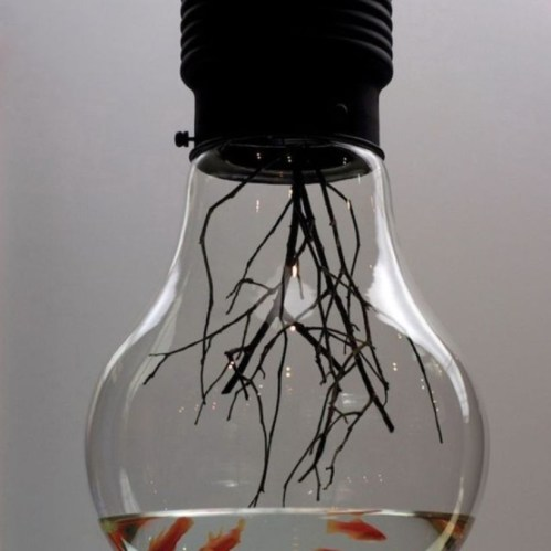 Bright ideas to recycle old light blubs 10