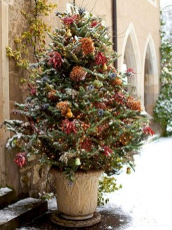 Colorful winter planters for your outdoor decorations 19