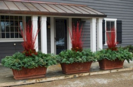 Colorful winter planters for your outdoor decorations 34