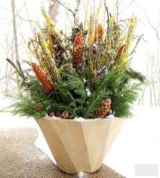 Colorful winter planters for your outdoor decorations 38