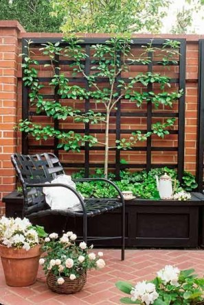 Beautiful yet functional privacy fence planter boxes ideas 25