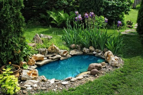 Design a fish pond garden with a waterfall concept 20