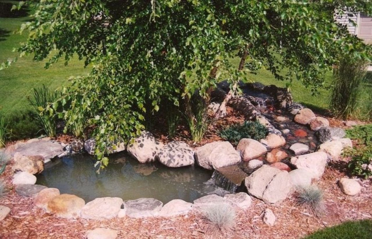 Design a fish pond garden with a waterfall concept 24