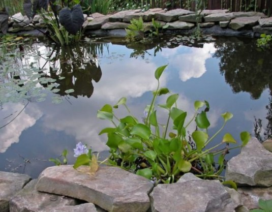 Design a fish pond garden with a waterfall concept 29