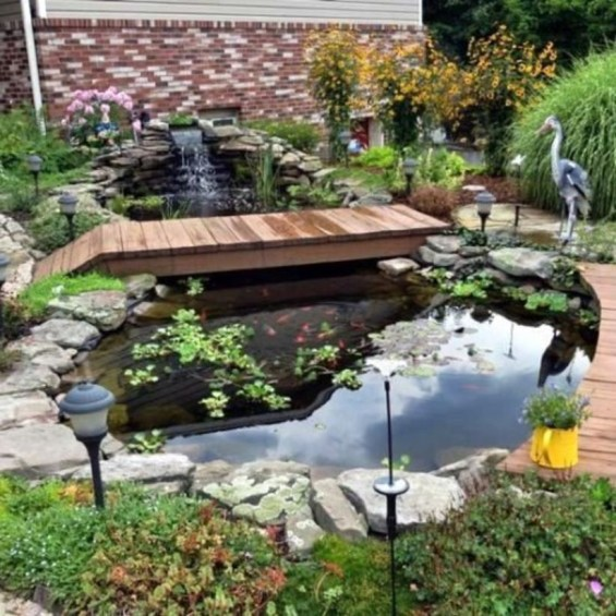Design a fish pond garden with a waterfall concept 32