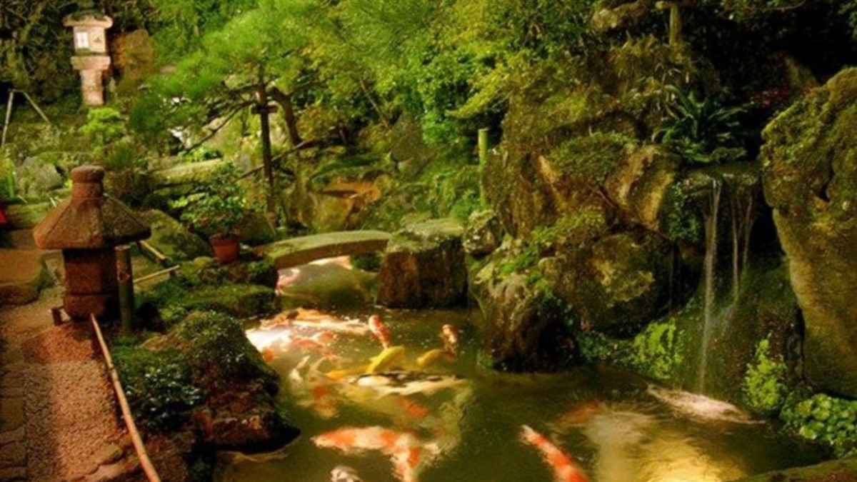 42 Design Fish Pond Garden with Waterfall Concept