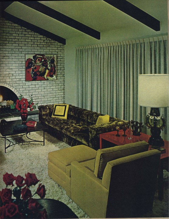 The design of the living room looks luxurious 53