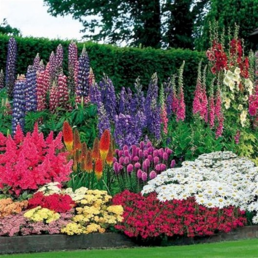 Amazing rose garden ideas in this year 05