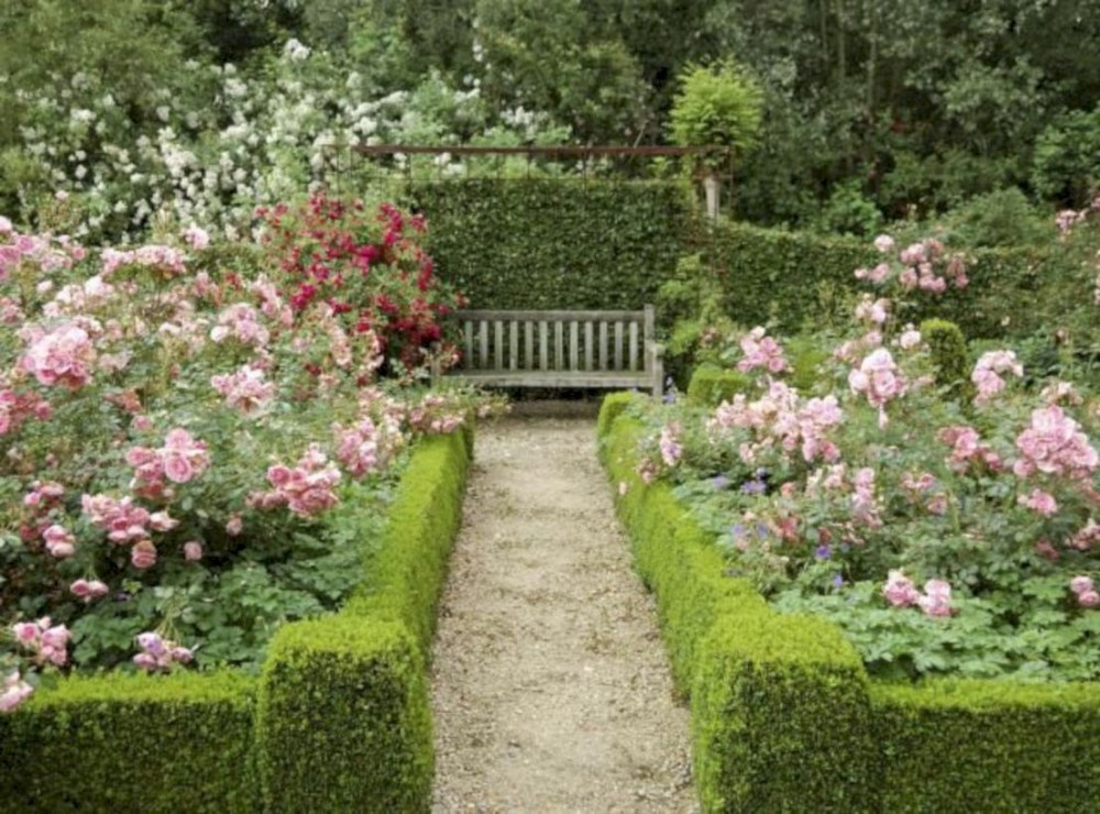 Amazing rose garden ideas in this year 16