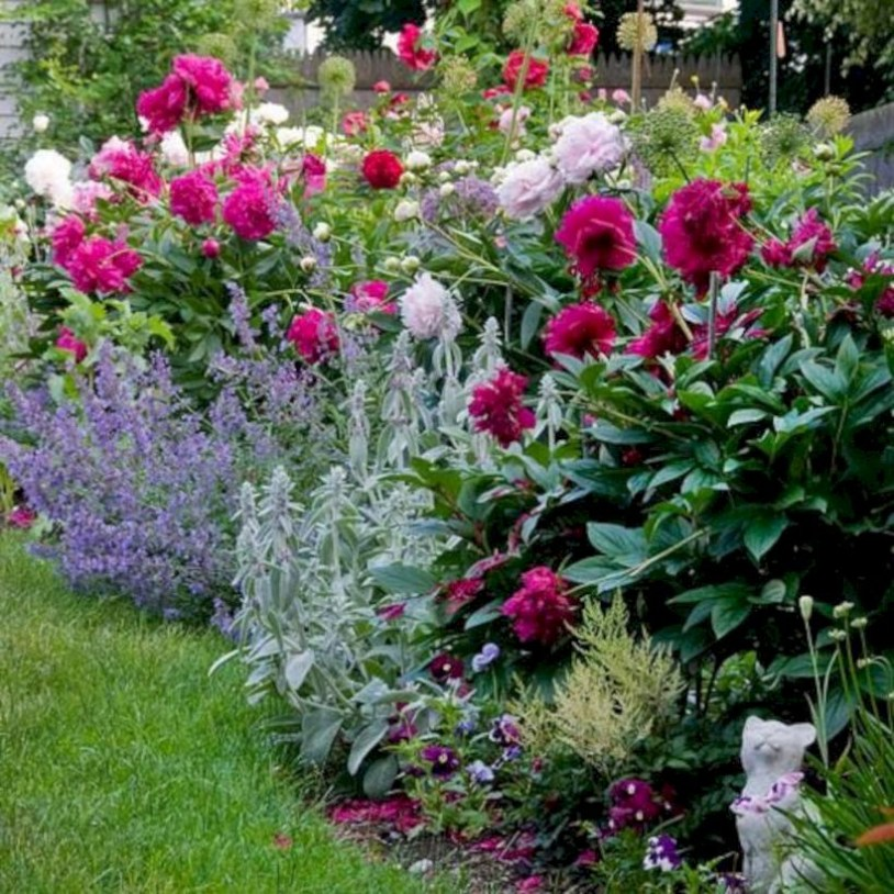 Amazing rose garden ideas in this year 43