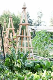 Diy garden design project in your home 35