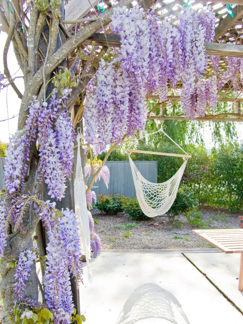 Garden design that is refreshing and comfortable 29