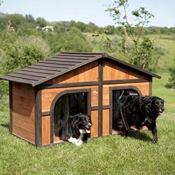 Home design ideas for your pet at home 15