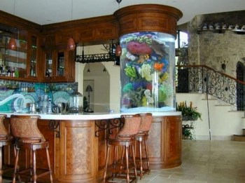 Aquarium design ideas that make your home look beauty 04