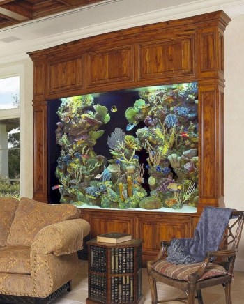 Aquarium design ideas that make your home look beauty 09