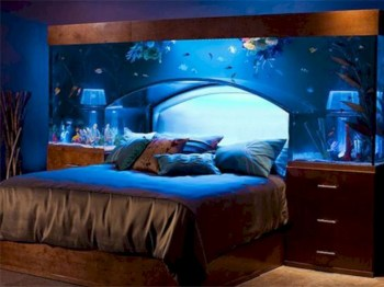Aquarium design ideas that make your home look beauty 25