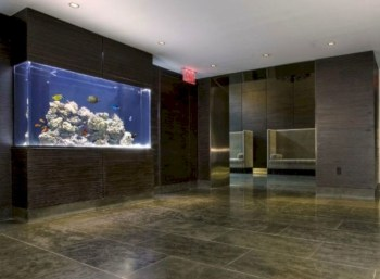 Aquarium design ideas that make your home look beauty 27