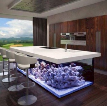 Aquarium design ideas that make your home look beauty 38