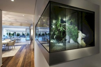 Aquarium design ideas that make your home look beauty 40