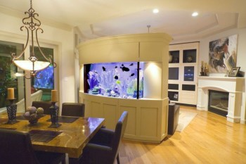 Aquarium design ideas that make your home look beauty 43