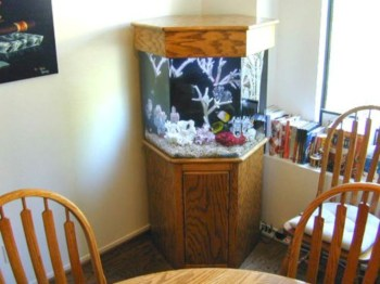 Aquarium design ideas that make your home look beauty 44