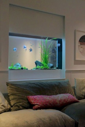 Aquarium design ideas that make your home look beauty 46