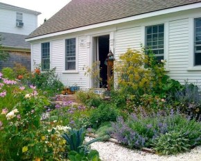 The best and stunning front yard design 23