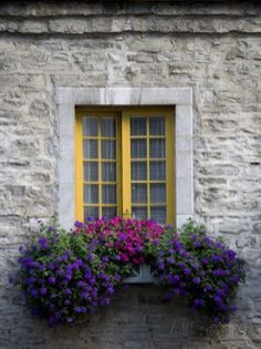Exterior decoration ideas with flower in window 09