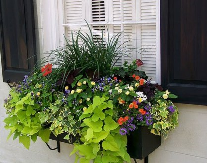 Exterior decoration ideas with flower in window 48