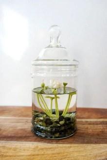Indoor water garden ideas that fresh your room 05