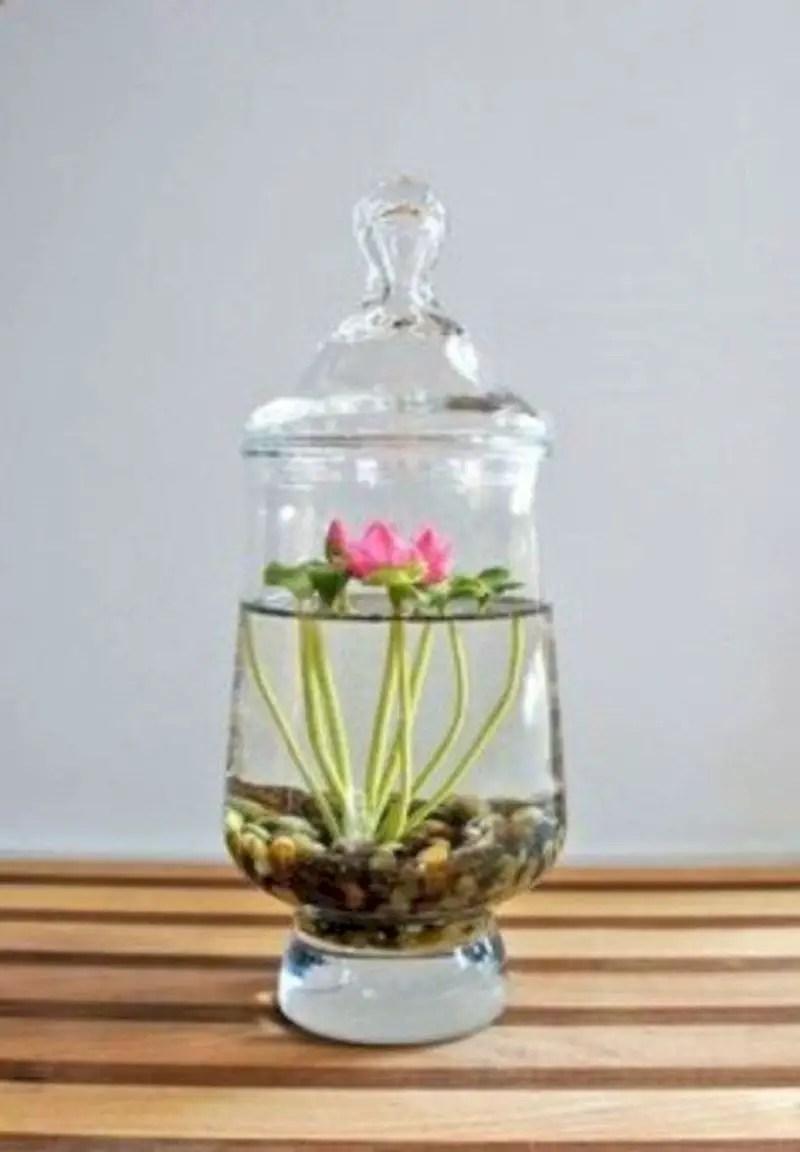 Indoor water garden ideas that fresh your room 12