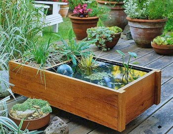 Indoor water garden ideas that fresh your room 17